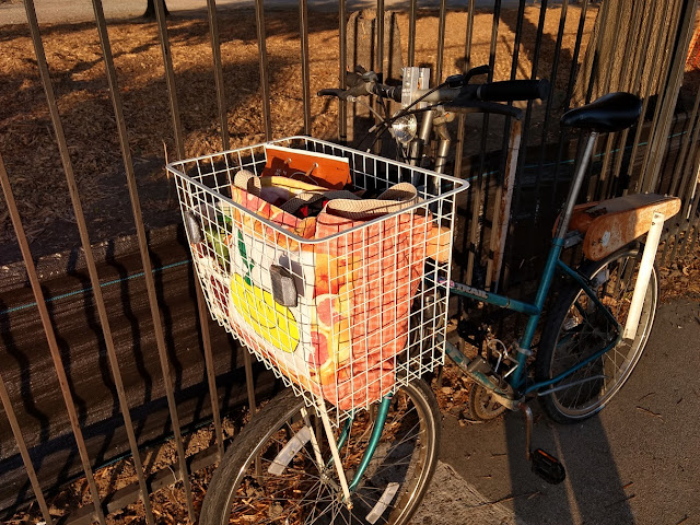 new bicycle basket with groceries