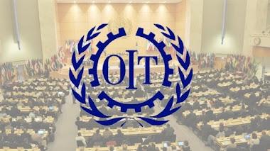 En La Opinión De La Profesora Nelva Reyes Barahona: Recomendaciones de la OIT ante el COVID-19