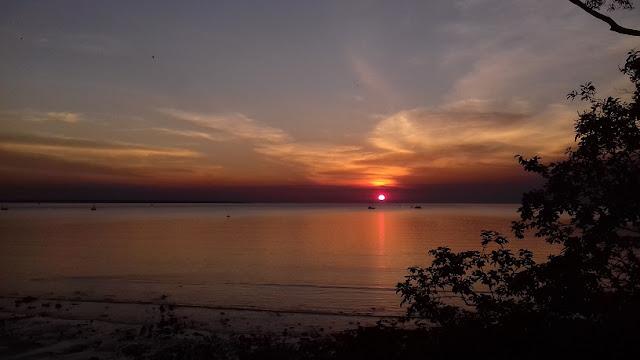 tramonto darwin