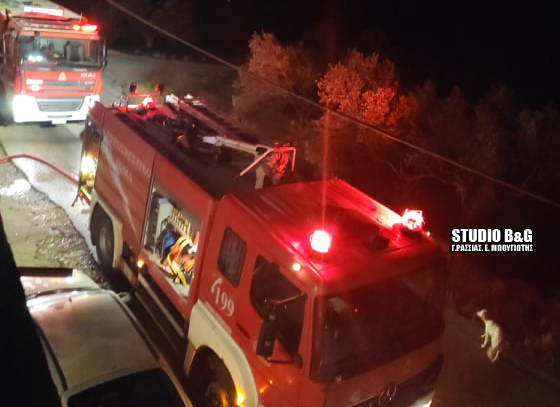 Φωτιά σε ξυλουργείο στο Κρανίδι Αργολίδας - Έγκαιρη η επέμβαση της πυροσβεστικής