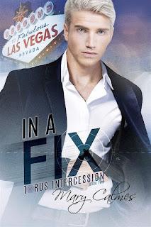 In a Fix |Torus Intercession #2 | Mary Calmes