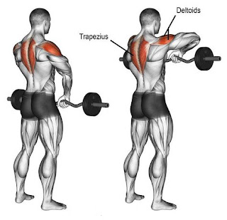 Top-5-Exercises-To-Build-Shoulders, Upright-Row