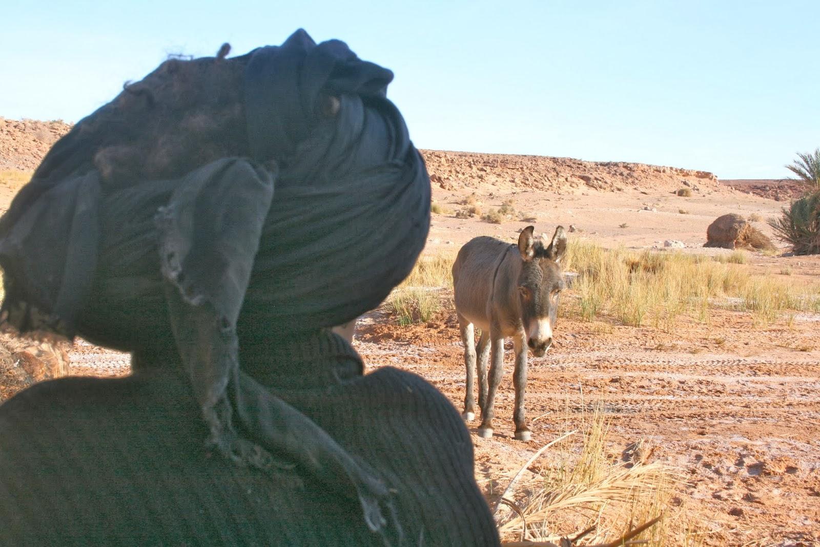 marruecos, desierto, rutas, aventura, viajar, felicidad