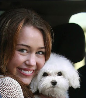 Miley Cyrus With Their Dog