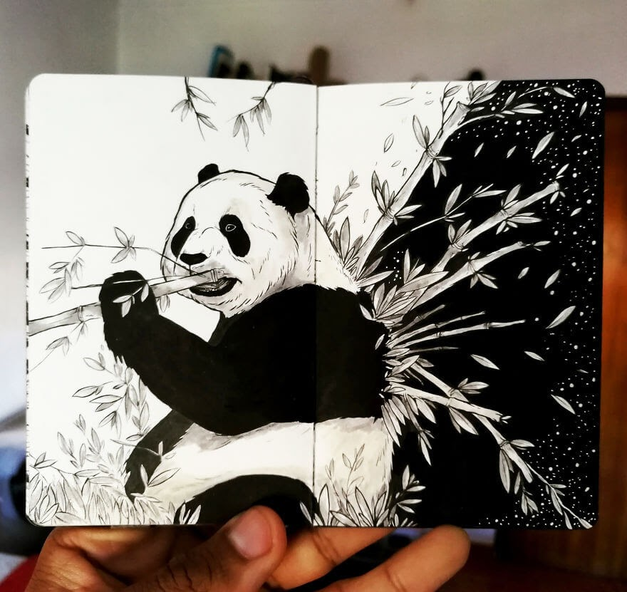 04-Bamboo-Panda-Bráulio-Monteiro-Moleskine-Pen-and-Ink-Animal-Illustrations-www-designstack-co