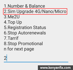 sim upgrade