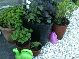 gardening, herb garden, life on pig row