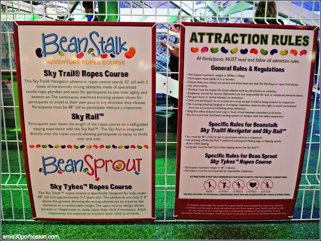 Reglas del Bean Stalk