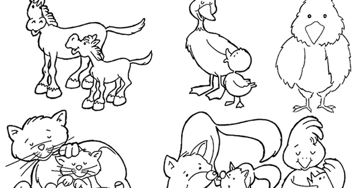Animales Para Colorear: Animales Viviparos Para Colorear