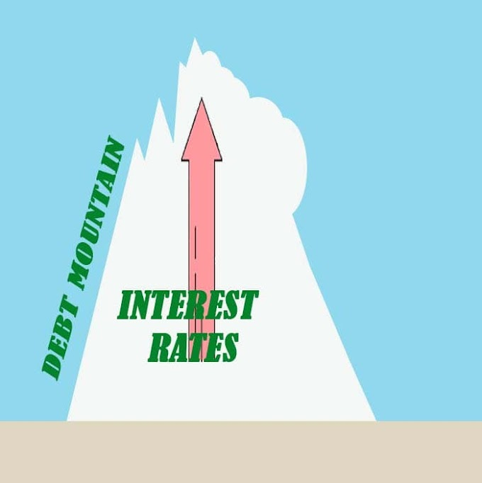 Debt management strategies for beginners