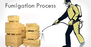 Fumigation-Process
