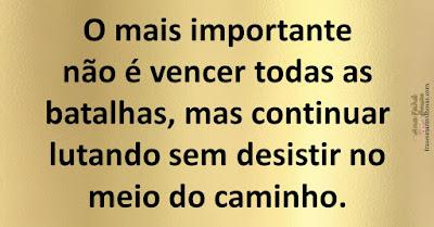 O mais importante não é vencer todas as batalhas, mas continuar lutando sem desistir no meio do caminho.