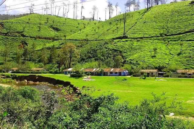 Munnar, Kerala Tourism