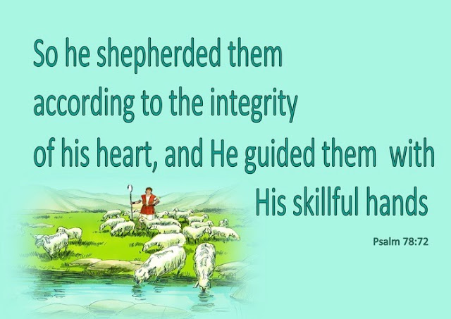 David shepherded them with integrity of heart; with skillful hands he led them.