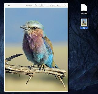 Macのプレビュー機能(画像)