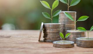 Cara Melakukan Investasi Reksadana yang Wajib Diketahui