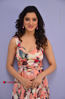 Actress Richa Panai Pos in Sleeveless Floral Long Dress at Rakshaka Batudu Movie Pre Release Function  0048.JPG