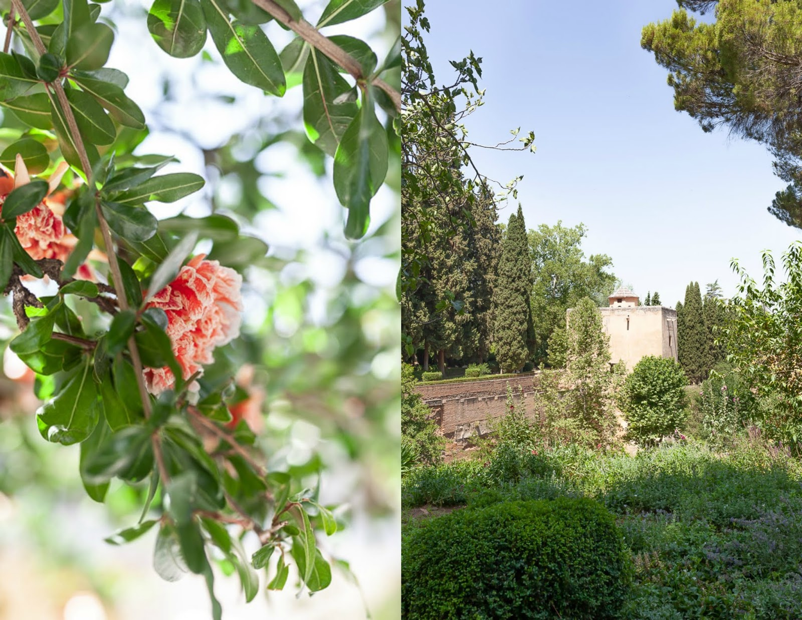 Gardens of Alhambra