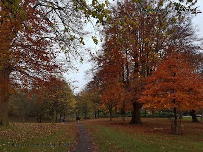 Phoenix park, Dublin