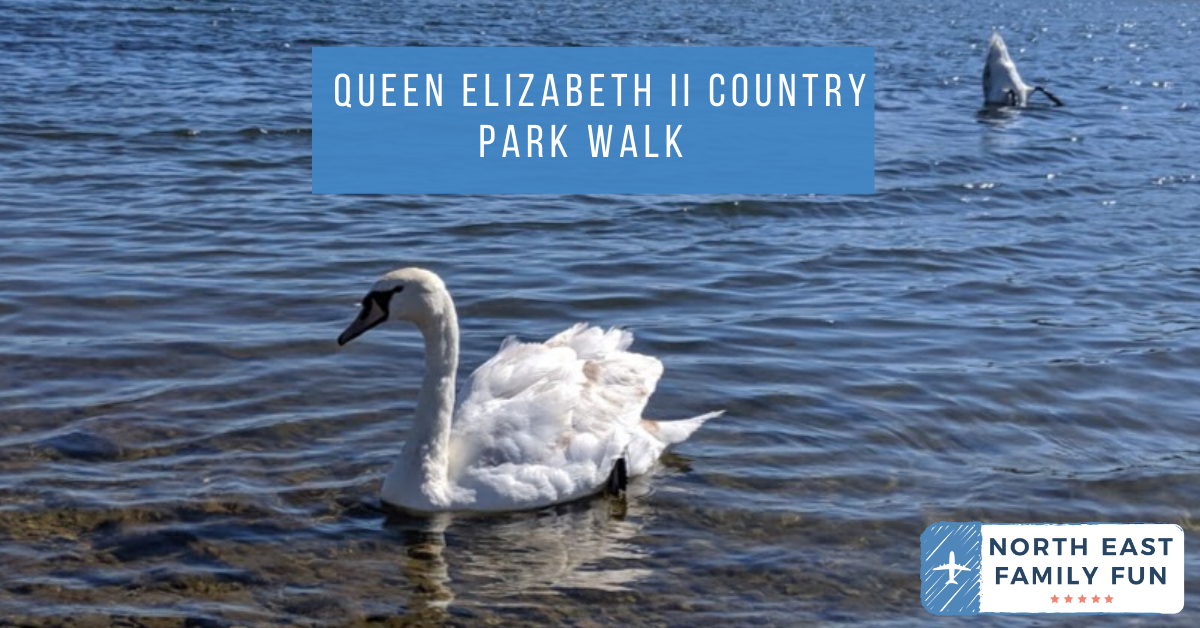 Queen Elizabeth II Country Park Walk