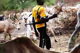 Herdsmen attack: Four family killed