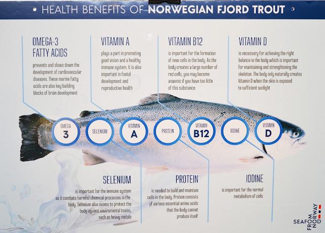 Kebaikan Ikan Fjord Trout Norway