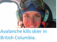 http://sciencythoughts.blogspot.co.uk/2018/03/avalanche-kills-skier-in-british.html