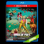 Aves de presa (y la fantabulosa emancipación de una Harley Quinn) (2020) BDRip 1080p Latino
