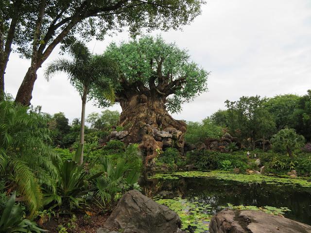 The Tree of Life Disney's Animal Kingdom