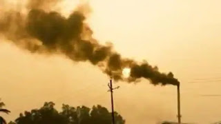 nutral-carbon-in-india