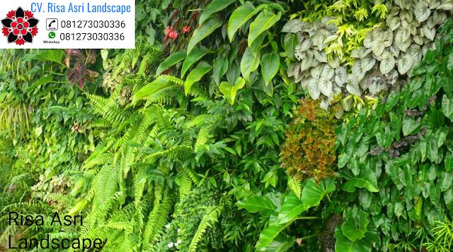 TUKANG TAMAN VERTIKAL VERTICAL GARDEN GREEN WALL  SURABAYA - JASA PEMBUATAN PERTAMANAN LANDSCAPE