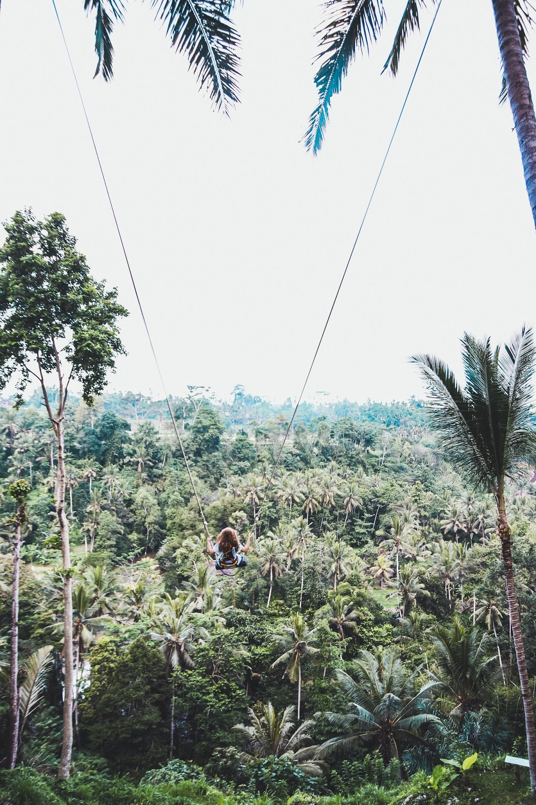 Why The Bali Jungle Swing Should Be On Your Bucket List