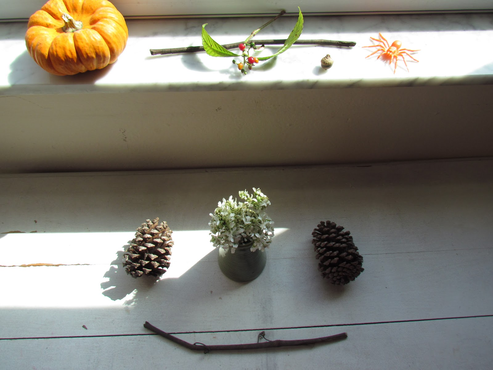 A pumpkin windowsill display and fall festive decorations, Halloween decorations, and festive fall flat lay, autumn nature art