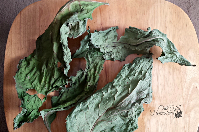 Dried comfrey leaves