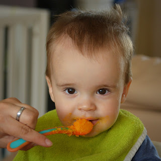 Extreme Baby Food Diet