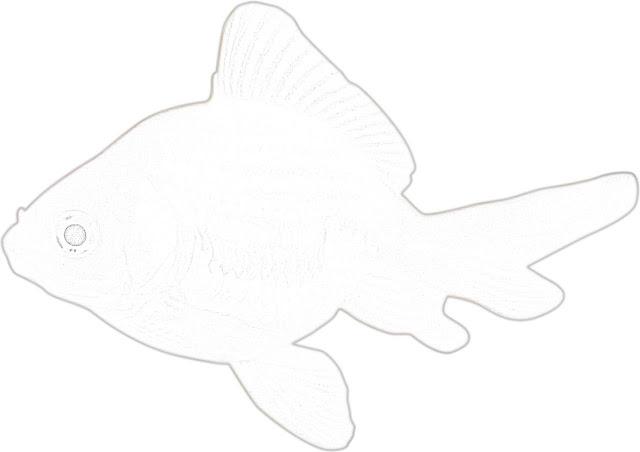 Fish coloring coloring.filminspector.com