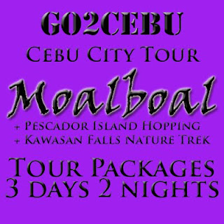 Cebu City + Moalboal Beach Adventure + Kawasan Falls Nature Trek + Pescador Island Hopping in Cebu Tour Itinerary 3 Days 2 Nights Package