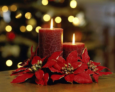 Red-christmas-candel-flower-decorated-wallpapers