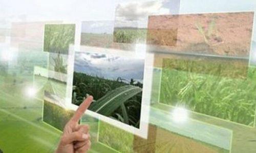 Τη δυνατότητα δημιουργίας αγροτικών ΙΕΚ αλλά και την ίδρυση Ψηφιακής Ακαδημίας Αγροτικής Ανάπτυξης μελετά ο αρμόδιος υπουργός Σπήλιος Λιβανός, στο πλαίσιο της δημιουργίας μιας νέας φιλοσοφίας στο ζήτημα της εκπαίδευσης και κατάρτισης των αγροτών.
