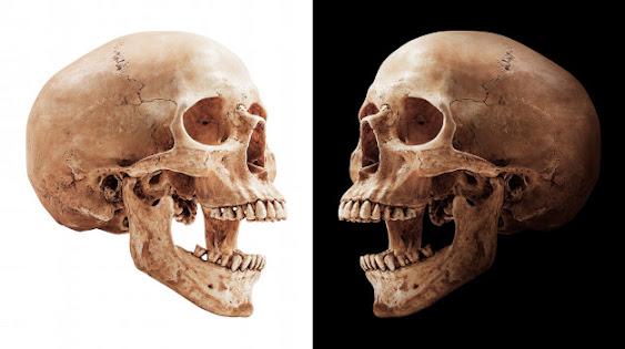 esqueleto in English