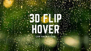 CSS Hover Animation with flip Effect