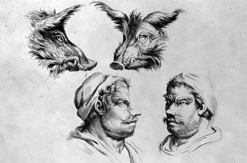 09-Wild-Boar-Animal-Transformations-Drawings-from-the-1600s-www-designstack-co