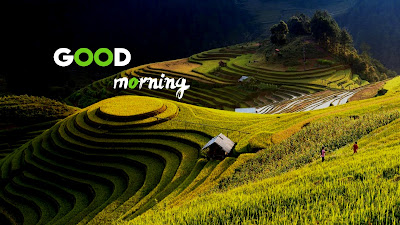 20+ best Good morning images hd wishes