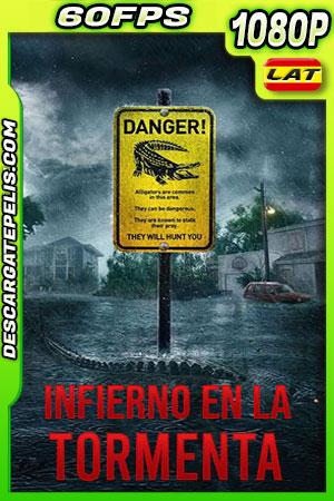 Infierno en la tormenta (2019) 1080p BDrip 60fps Latino – Ingles