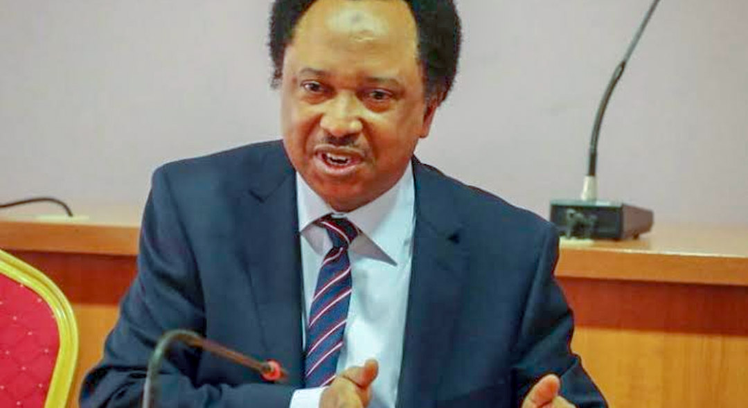 Buhari jam wetin pass im power — Sani mocks