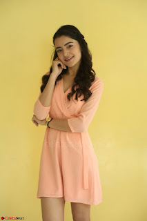 Rukshar Mir in a Peachy Deep Neck Short Dress 114.JPG