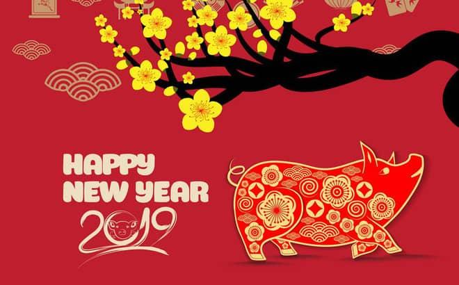 Chúc mừng năm mới - Xuân Kỷ Hợi 2019