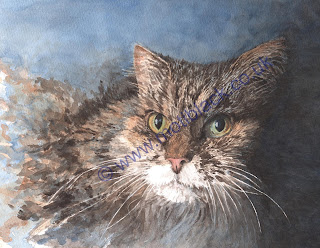 A watercolour image of a long haired tabby cat