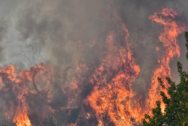 28 Περιφερειακοί Σύμβουλοι ζητούν έκτακτη σύγκλιση του ΠΕ.ΣΥ. για τις πυρκαγιές