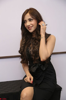 Angela Krislinzki in Transparent Black Gown at Rogue Movie Teaser Launch 1st March 2017 070.JPG